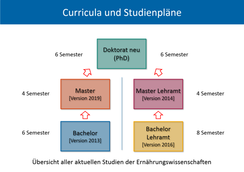 graphic shows all current curricula at the Department